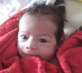 2011-07-22_emilia